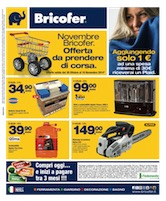 Bricofer novembre bricofer volantinoweb for Euronics stufe a gas