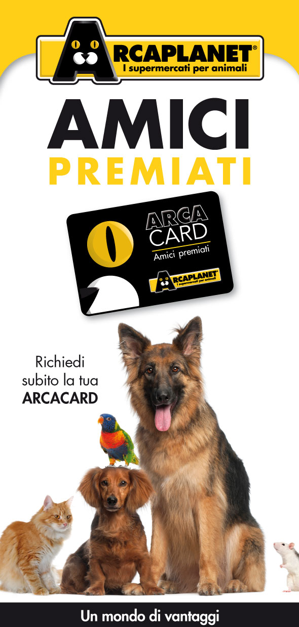 Leaflet-Arcacard_2012_front